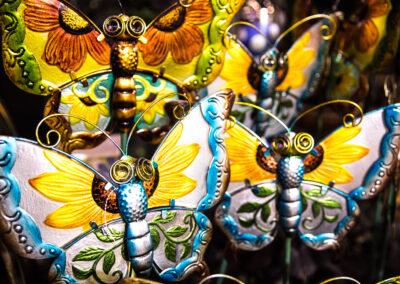 Outdoor Butterflies art